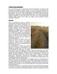 Charakteristik, Bedeutung, Gefährdung und Pflege von Rainen und ...