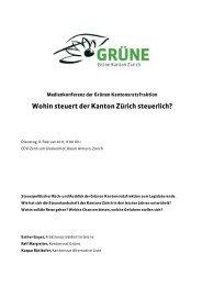 110208 MK Steuern Mappe - Grüne Kanton Zürich