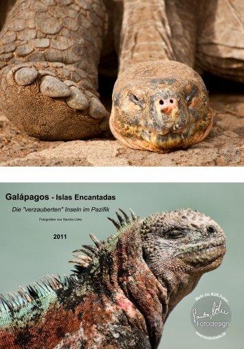 Galápagos Kalender 2011 - Sandra Löhe Fotodesign