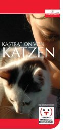 Informationsfolder Kastration von Katzen