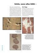 Prospekt_ADFE__03_08.pdf - Fliesen Urban - Seite 2