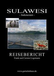 Reisebericht Sulawesi 2008 - Frank und Carstens Garnelenhaus