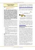 Internationale Jugendbildung - Bilharzschule - Seite 3
