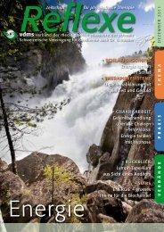Reflexe Ausgabe Dezember 2011 - vdms