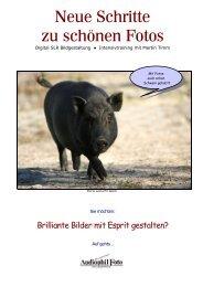 Digital SLR Bildgestaltung - Flyer - Audiophil Aachen - Audiophil Foto