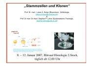 """""""Stammzellen und Klonen"""""""