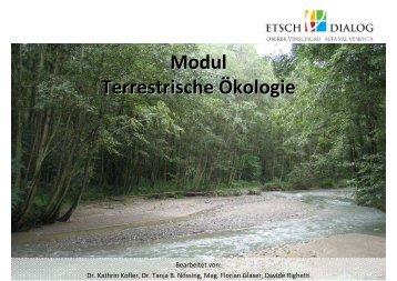 Modul Terrestrische Ökologie
