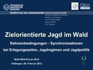 Zielorientierte Jagd im Wald - Wald-Wild-Forum 2012