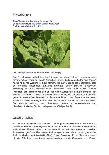 Phytotherapie Geschichtliches