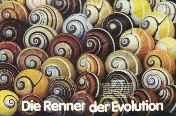 Die Renner der Evolution - Museum für Naturkunde