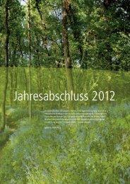 Jahresbericht 2012 - Bilanz und GuV (pdf/673 kb)