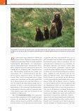 Ökologie - 6., aktualisierte Auflage  - Seite 3