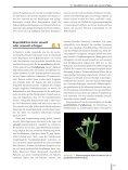 Ökologie - 6., aktualisierte Auflage  - Seite 4