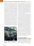 Ökologie - 6., aktualisierte Auflage  - Seite 5