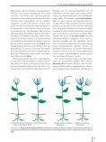 Ökologie - 6., aktualisierte Auflage  - Seite 6