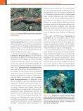 Ökologie - 6., aktualisierte Auflage  - Seite 7