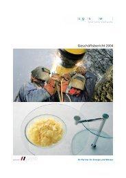 Geschäftsbericht 2004 - Online Consulting AG