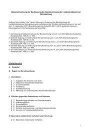 Berufsordnung PDF
