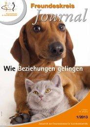 Ausgabe 1-2013 - Freundeskreise für Suchtkrankenhilfe