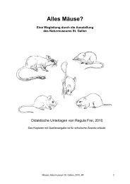 Alles Mäuse? - Naturmuseum St.Gallen
