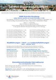 Pro Rheinfelden – Stadtmarketing e - Klick-Bild
