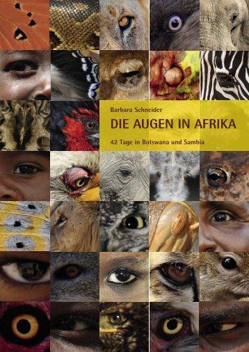 Die Augen in AfrikA - Bariez