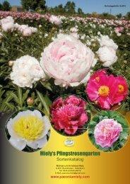 Katalog 20 - Pfingstrosengarten