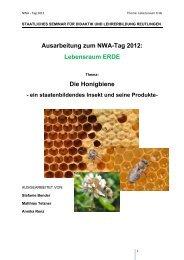 Honigbiene – ein staatenbildendes Insekt und seine Produkte
