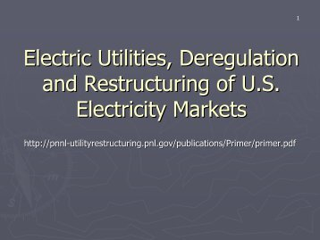 Electric Utilities, Deregulation and Restructuring of U.S. Electricity ...