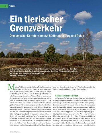 Ein tierischer Grenzverkehr - Das Projekt Ökologischer Korridor ...