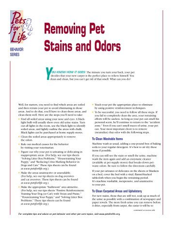 Removing Stains & Odors - Buffalo Humane