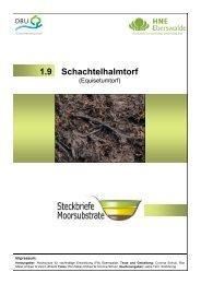 Schachtelhalmtorf 1.9