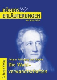 Erläuterungen zu Johann Wolfgang - Die Onleihe