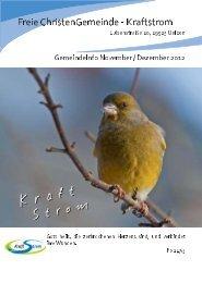 Gemeindeinfo November / Dezember 2012 - Freie ...