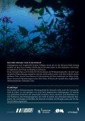 Flyer: Fühlbare Qualität. Wasser fürs Leben (975 ... - Unsere Steinach - Seite 3