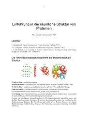 Einführung in die räumliche Struktur von Proteinen