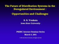The Future of Distribution Systems in the Deregulated Environment ...