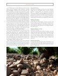 die Weißwein-Hochburg Spaniens - Belondrade - Seite 2