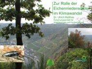 1,9 MB - Niederwälder in Rheinland-Pfalz