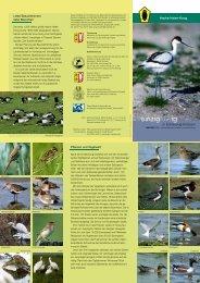 Hauke-Haien-Koog - Landesamt für Landwirtschaft, Umwelt und ...