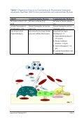 Download - Selbsthilfegruppen Plasmozytom / Multiples Myelom - Seite 3