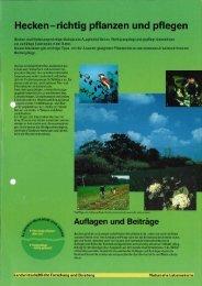 Hecken - richtig pflanzen und pflegen