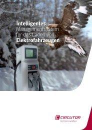 download pdf (1.4 MB)... - infga