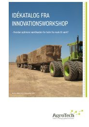 Idékatalog fra InnovatIonsworkshop - AgroTech