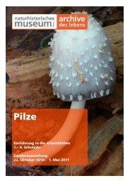 Pilze - Naturhistorisches Museum