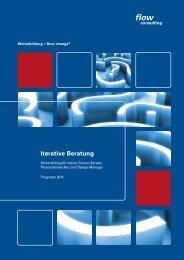 Iterative Beratung - flow