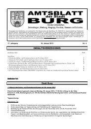 AMTSBLATT 4-2013.pdf - Stadt Burg