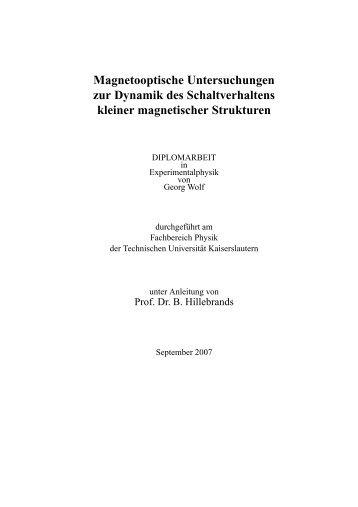 Magnetooptische Untersuchungen zur Dynamik des ...