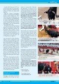 Stierkampf-UNESCO - SOS Galgos - Seite 2