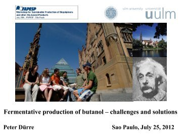 Fermentative production of butanol – challenges and ... - Fapesp